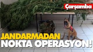 JANDARMADAN NOKTA OPERASYON!